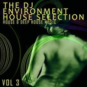 The DJ Environment: House Selection, Vol. 3 by Various Artists