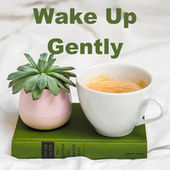 Wake Up Gently by Various Artists