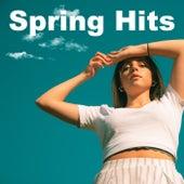 Spring Hits von Various Artists