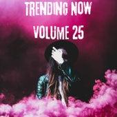 Trending Now Volume 25 de Various Artists