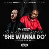 She Wanna Do' by DJ Crook