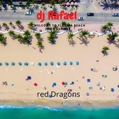 Welcome To Florida Beach Wild Summer by DJ Rafael