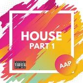 House (Part 1) de AAP