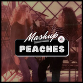 Peaches (Mashup) by TwiSis