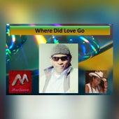 Where Did Love Go (Remix) by Max Suavo