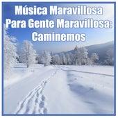 Música Maravillosa para Gente Maravillosa: Caminemos de 101 Strings Orchestra
