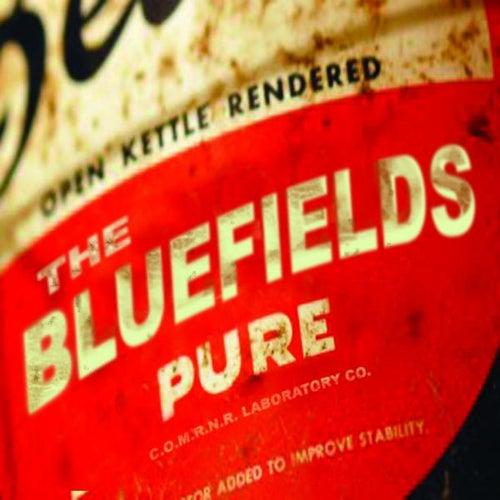Pure by Blue Fields