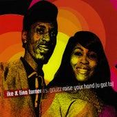 Raise Your Hand (U Got To) de Tina Turner