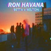 Ron Havana von Betta (Tahereh Mousazadeh)