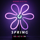 Spring Selection by Various Artists