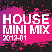 House Mini Mix 2012 - 01 von Various Artists