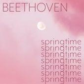 Beethoven - Springtime de Ludwig van Beethoven