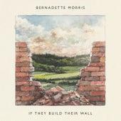 If They Build Their Wall de Bernadette Morris
