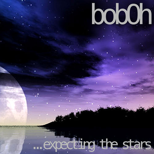 Expecting The Stars by Various Artists