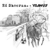 The Slumdon Bridge EP by Ed Sheeran