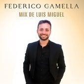 Mix de Luis Miguel by Federico Gamella