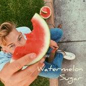 Watermelon Sugar de David Snyder