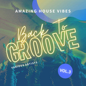 Back To Groove (Amazing House Vibes), Vol. 3 by Various Artists
