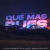 Que Mas Pues (Remix) von Treekoo
