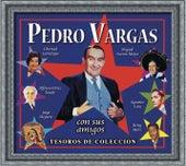 Tesoros De Coleccion - Pedro Vargas de Pedro Vargas