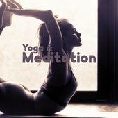 Yoga & Meditation – Balancing Mind and Body by The Buddha Lounge Ensemble