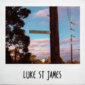 Harrison Ave by Luke St James