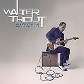 Blues for the Modern Daze de Walter Trout