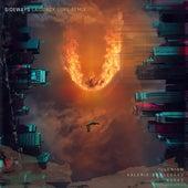 Sideways (feat. Valerie Broussard) (Laidback Luke Remix) by ILLENIUM