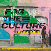 For The Culture by Alborosie
