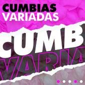 Cumbias Variadas de Various Artists