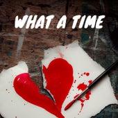What A Time de Various Artists