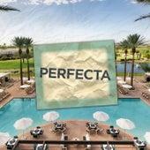 Perfecta (Remix) de DJ Lauuh