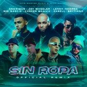 Sin Ropa (Remix) de Anonimus