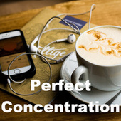 Perfect Concentration von Various Artists
