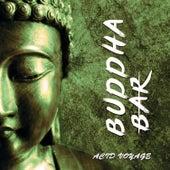 Acid Voyage by Buddha-Bar