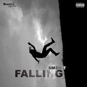 Falling by Smsn T