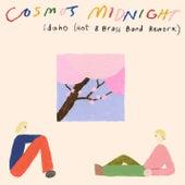 Idaho (Hot 8 Brass Band Rework) de Cosmo's Midnight