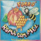 Um Lindo Sonho von Forró Romã Com Mel
