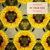 By Your Side (feat. Tom Grennan) by Calvin Harris