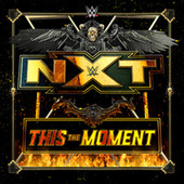 This The Moment (NXT) by WWE