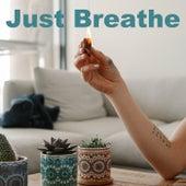 Just Breathe de Various Artists