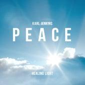 Healing Light: Peace de Karl Jenkins