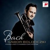 Bach von Gábor Boldoczki