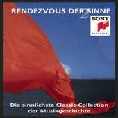 Rendezvous der Sinne Vol. 2 von Various Artists