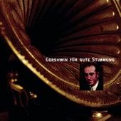 Gershwin für gute Stimmung von Various Artists