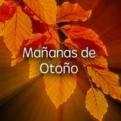 Mañanas de Otoño by Various Artists