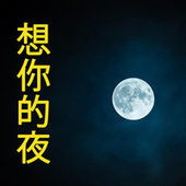 Nights of Missing You (想你的夜) de Various Artists