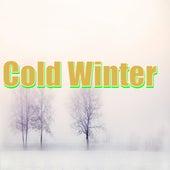 Cold Winter by Lofi Fruits Rap Lofi Fruits-Music