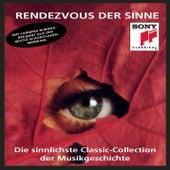 Rendezvous der Sinne Vol. 1 von Various Artists