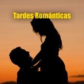 Tardes Románticas by Various Artists